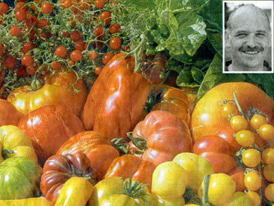 Tomatenprobe