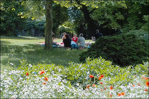 Weinbergswandern und Picknick im Park