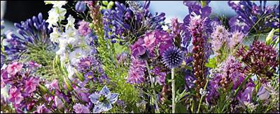 Florales aus dem Hochsommergarten