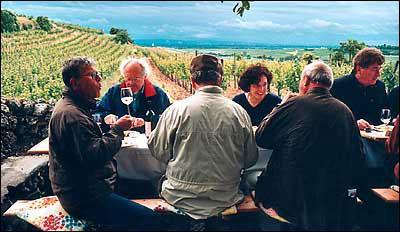 Einladung ins Weingut